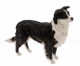 Border Collie Figurine Standing (LP14482) or Ready to run (LP14277) Juliana Collection